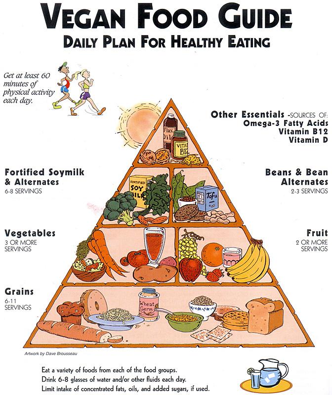 схем питания здорового